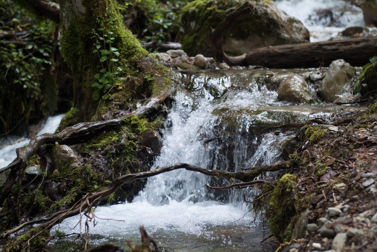 Cascade de la Pisserotte05